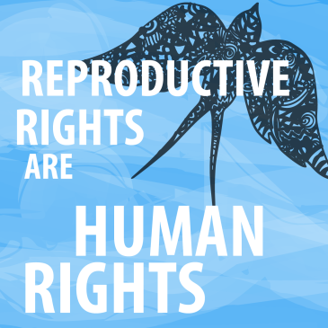 reproductive human rights